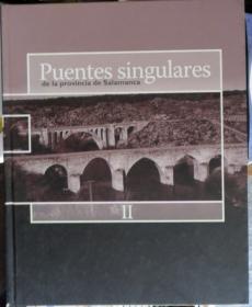 puentes singulares
