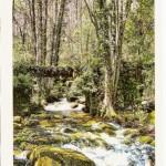 Postal de Mogarraz. Camino del Agua. Río Rumilano. Puente de Mon